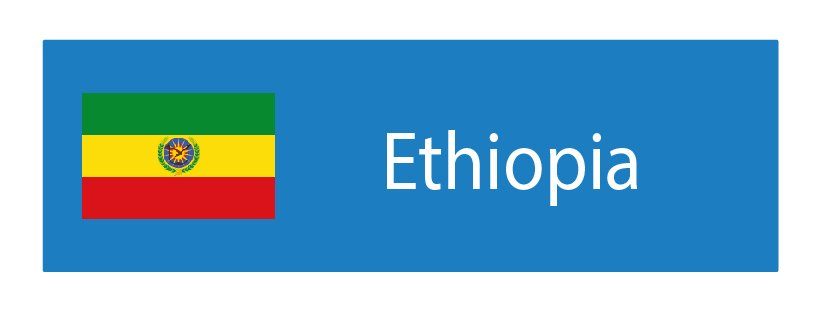 Ethiopia Forex Brokers List